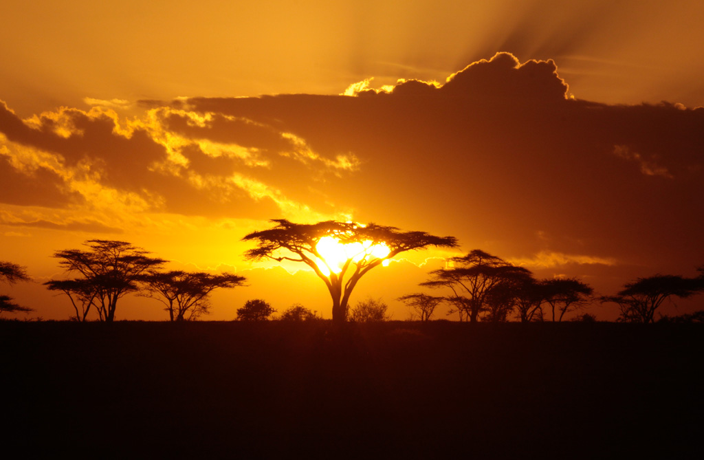 Atardecer africano