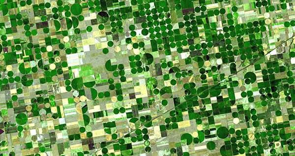 crops_kansas_ogallala_aquifer